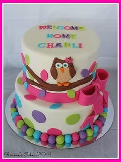 Owl Cake Welcome home baby