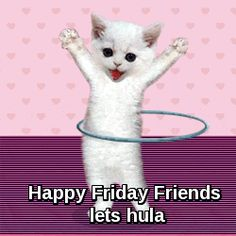 Friday   Jewels Art Creation. It's not Friday, but who cares, it's a hula hooping cat!