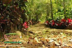Días perfectos en nuestros senderos  #BocaditoDelCielo #Senderos #Naturaleza #ParaisoNatural
