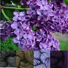 My Color Palettes by mooberly | Crocheting Ideas