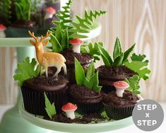 Edible Cupcake Terrarium Tutorial!