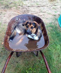 Makeshift Bath