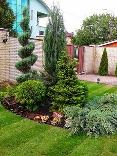 creative front yard landscaping ideas for your home 41 - Gartengestaltung ideen - Paisagismo Beautiful Backyards, Patio Garden, Plants, Garden Design, Urban Garden, Yard Design, Conifers Garden, Front Yard Garden Design, Evergreen Garden
