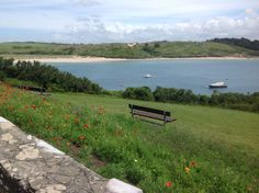 Padstow, Cornwall Cornwall, Mountains, Nature, Travel, Viajes, Traveling, Nature Illustration, Off Grid, Trips