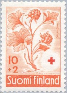 Flower Stamp, Red Cross, Postage Stamps, Finland, Painting & Drawing, Tattoo, Tags, My Favorite Things, Gallery