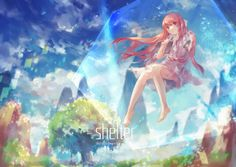 Who has seen shelter?