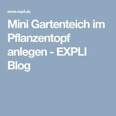 Mini Gartenteich im Pflanzentopf anlegen - EXPLI Blog