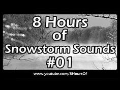 Snowstorm and blizzard sounds for sleep and relaxation. 8 Hours of long cold relaxing winter snowstorm and blizzard sounds in a forest sounds for sleep, meditation, yoga and relaxation. 