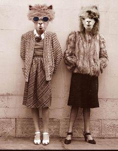 Doris and Zelda by Shamanmoon on deviantART