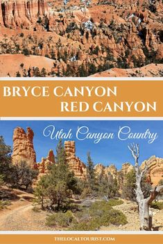 Explore Utah Canyon Country with a visit to Red Canyon and Bryce Canyon. Canada Travel, Travel Usa, Travel Tips, Travel Guides, Canyon Country, Us National Parks, Bryce Canyon, United States Travel