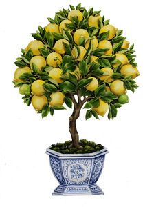 """$220.00  Free-standing lemon topiary in a blue and white chinoiserie pot.  Pigment and varnish on wood, produced from an original Katharine Barnwell oil painting.  22 1/8""""h x 14 2/3""""w x 3/8""""d (add 4"""" depth for the stand)  Stand is hinged so that piece can be stored flat."""