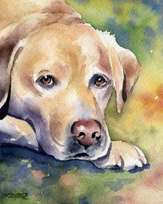 "Amazon.com: ""Labrador Retriever"" Art Print Signed by Artist DJ Rogers: Watercolor Paintings"