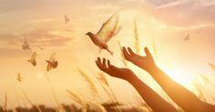 14 bodů, jejichž znalost vám umožní zbavit se nepříjemných bolestí po celém těle - Moc vědomí Prayer List, Prayer For You, Daily Prayer, Dolores Cannon, Praying For Your Children, Don Miguel, Dig Deep, Free Courses, Child Life