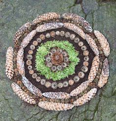 make circles! land art.