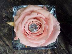 Une Rose pour la Vie, découvrez notre collection de roses naturelles stabilisées sur http://www.artifleurs-fleurs-artificielles.com  #cadeau
