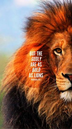 Proverbs 28:1 BUT THE GODLY ARE AS BOLD AS LIONS. ... (not my strength, but God's strength rises up in me as a lion. Jesus is the Lion of Judah)
