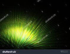 Wide   Shining Flower Fireworks   Background - Fractal Art