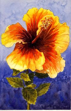 How to paint Hibiscus flowers in watercolors. Part of a course on painting flowers. 2 hour class recorded live replay. Included is a pdf manual with many illustrations and reference pictures. watercolor, watercolour, paint, water, art, lesson, class, $14