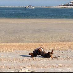 Backbend on the beach