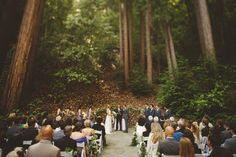 A ceremony under the towering redwoods as the fresh breeze filled their lungs. Outdoor California wedding ideas.