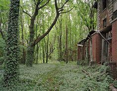 A New York c'è un'intera isola abbandonata a mezz'ora da Central Park. Le foto di Christopher Payne.  #nature #photography
