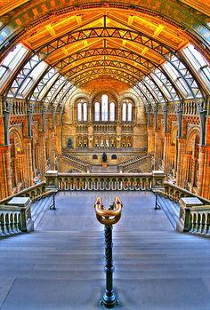 Natural History Museum - London | Flickr - Photo Sharing!