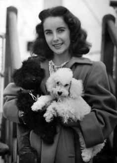 Liz and her poodles. Like her friend Michael Jackson, Liz is a lover, not a fighter. She loved the Poodle Peace Parade.