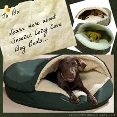 1000+ ideas about Large Dog Beds on Pinterest