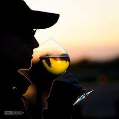 Geniesse den Frühlingsabend mit einen leckeren Wein @dilenardo_vineyards #vinoakvo #drinkwine #berlinwein #berlintrinktwein #weißwein #weisswein #frühling #frühlingsgefühle #frühlingswettergenießen #frühlingsliebe #frühlingswein #findedeinenfrühlingswein #gläschenwein #weinliebhaber