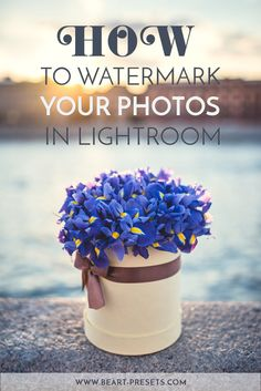 HOW TO WATERMARK YOUR PHOTOS IN LIGHTROOM — Lightroom Presets and Photoshop Actions | BeArt Presets
