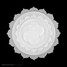 An Exploration of Sacred Geometry: Denver Commercial Art Photography Feature Image