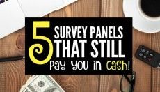 Five Paid Survey Panels That Still Pay in Cash - Not Points