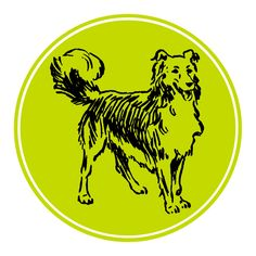 Click on the dog to join my email list - The Positive Dog - and receive a monthly newsletter of dog training tips and dog-related information.