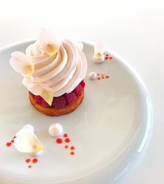 Framboise !! #eze #monaco #motivation #tropbon #kiff #gastronomy #bestteam #classique #michelinstar #grandtabledumonde #restaurant #relaischateaux #dessert #photography #culinary #simplicity #chef #cheftattoo #pastry #pastrylove #pastrychef #pastryworld #foodlove #cooking #gateau #gourmand #gourmandise @lachevredor @retrofloxy .