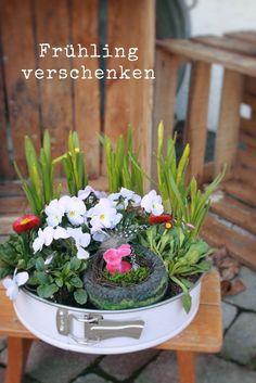 Upcycling alte backform bepflanzt garten pinterest for Verrostete deko