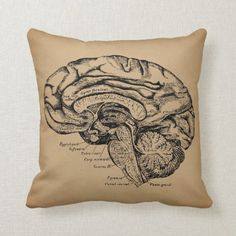 Shop Vintage Brain Diagram Antique Medical Anatomy Art Throw Pillow created by Vintage_Antique_Art. Brain Anatomy, Medical Anatomy, Anatomy Art, Halloween Art, Vintage Halloween, Halloween Decorations, Halloween Costumes, Halloween Appetizers, Halloween Drinks