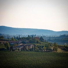 The stunning Tuscan countryside. This was taken whilst ons day trip from our base in Florence. One day I need to go back so I can just focus on capturing images of just this area. Florence Tuscany, Italian Wine, Day Trip, Countryside, Vineyard, To Go, Base, Italy, Mountains