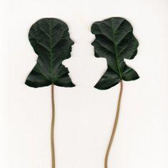 leaf silhouettes. splendid.
