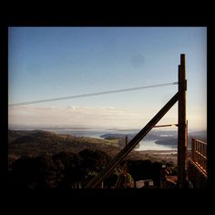 How about these views from the start of Zip at EcoZip Adventures Waiheke Island, Auckland, Golden Gate Bridge, New Zealand, Trip Advisor, Things To Do, Social Media, Zip, Adventure