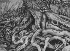 charcoal, trees, roots, paper, drawing, pastel, wild at heART, lindahp, linda harrison-parsons