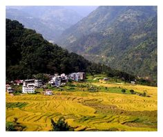 ** THE GOLDEN BLISS OF DENTAM ~SIKKIM ** through the eyes of lifeofjoy