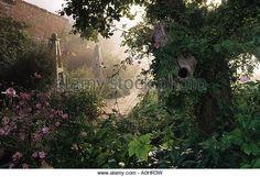 Private garden Sussex Design Fiona Lawrenson Old hollow apple tree in border Verbena bonariensis Painted obelisks - Stock Image