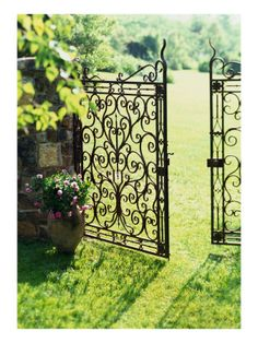Iron Gate                                                       …