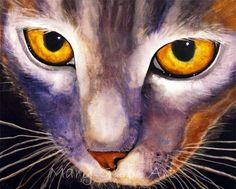 Cats   Mary Gibbs Art