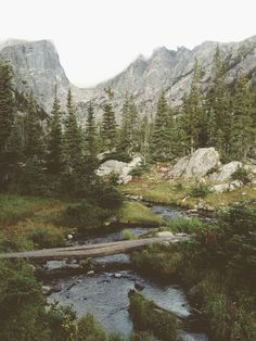 Dream Lake Creek Art Print -It's in Rocky Mountain National Park, Colorado. Beautiful World, Beautiful Places, Simply Beautiful, Rocky Mountain National Park, Adventure Is Out There, Oh The Places You'll Go, The Great Outdoors, Wonders Of The World, Nature Photography
