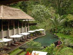 Maya Ubud Hotel, Ubud, Bali (Indonesia)  Beautiful infinity pool hanging on the mountain & river
