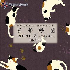 Neko2 「三毛と黒」