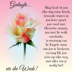 Good Morning Wishes, Day Wishes, Good Morning Quotes, Pray Quotes, Quotes Quotes, Life Quotes, Lekker Dag, Evening Greetings, Blessed Week
