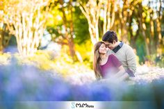 Dallas Arboretum engagement session wedding MnMfoto fall photography