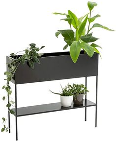 ray Wrought Iron Plant Stand,Nordic Style,Indoor Raised Rectangular Planter Box, Elevated Flower Pot Stand Holder with Shelf, Black Metal Frame Indoor Planter Box, Metal Planter Boxes, Window Planter Boxes, Indoor Garden, Metal Plant Stand, Wooden Plant Stands, Rectangular Planter Box, Outdoor Shelves, Garden Shelves